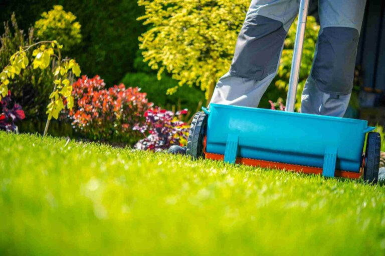 Complete Lawn Care in Aurora