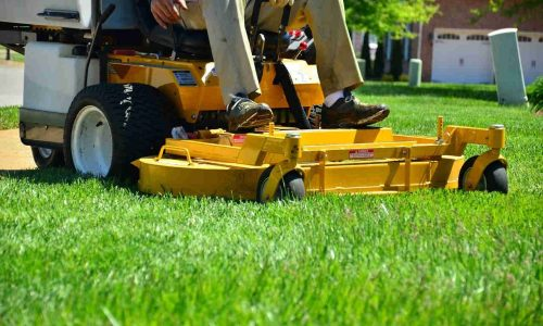 Lawn Mowing Service By Professionals